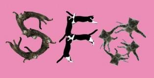sfg_cats_kopie