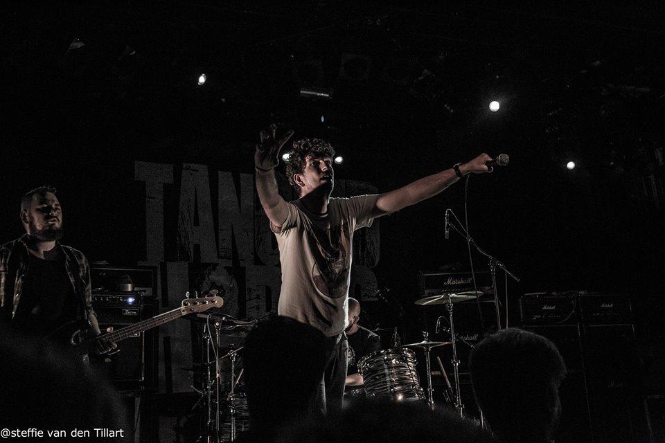 tangledhorns4