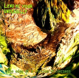 Lend Me Your Underbelly – The edge of a curious wilderness