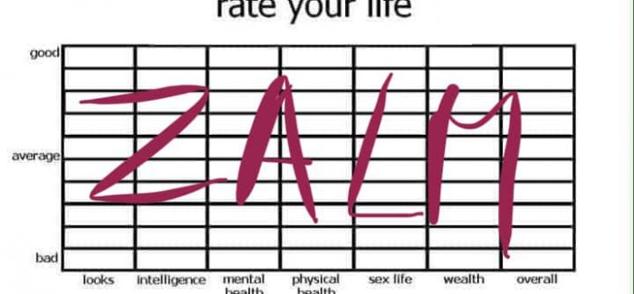 Het leven is raar, dit is het ZALM interview